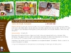 Montessori Garden (Childcare Centre)